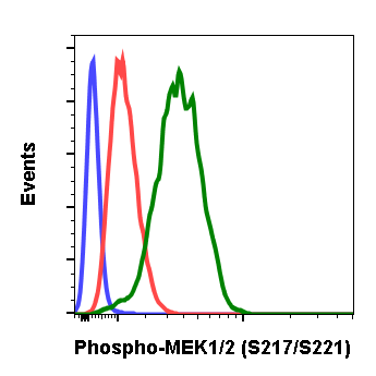 Phospho-MEK1/2 (Ser217/221) (Clone: H2) rabbit mAb