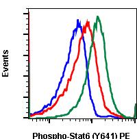 Phospho-Stat6 (Tyr641) (Clone: G12) rabbit mAb PE conjugate