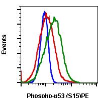 Phospho-p53 (Ser15) (Clone: 1C11) rabbit mAb PE conjugate