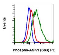 Phospho-Ask1 (Ser83) (Clone: G4) rabbit mAb PE conjugate