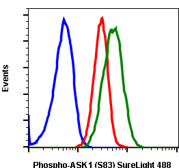 Phospho-Ask1 (Ser83) (Clone: G4) rabbit mAb SureLight 488 conjugate