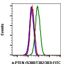 Phospho-PTEN (Ser380/Thr382/383) (Clone: E4) rabbit mAb FITC conjugate