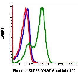 Phospho-SLP-76 (Tyr128) (Clone: 3F8) rabbit mAb SureLight488 conjugate