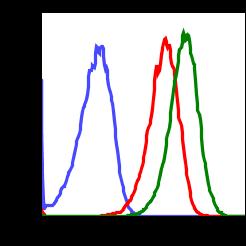 Phospho-Chk1 (Ser317) (Clone: F10) rabbit mAb APC conjugate