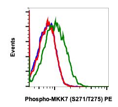 Phospho-MKK7 (Ser271/Thr275) (Clone: R4F9) rabbit mAb PE conjugate