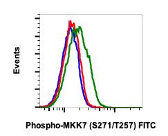Phospho-MKK7 (Ser271/Thr275) (Clone: R4F9) rabbit mAb FITC conjugate