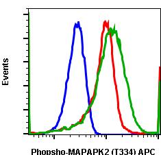 Phospho-MAPKAPK2 (Thr334) (Clone: H2) rabbit mAb APC conjugate