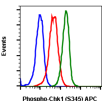 Phospho-Chk1 (Ser345) (Clone: R3F9) rabbit mAb APC conjugate