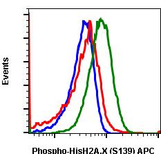 Phospho-Histone H2A.X (Ser139) (Clone: 1B3) rabbit mAb APC conjugate