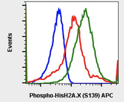 Phospho-Histone H2A.X (Ser139) (Clone: 1E4) rabbit mAb APC conjugate