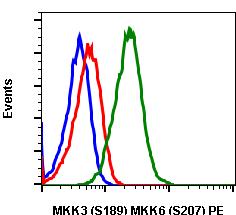 Phospho-MKK3 (S189)/MKK6 (S207) (Clone: D3) rabbit mAb PE conjugate