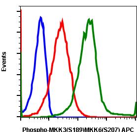 Phospho-MKK3 (S189)/MKK6 (S207) (Clone: D3) rabbit mAb APC conjugate