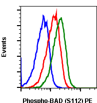 Phospho-BAD (Ser112) (Clone: B9) rabbit mAb PE conjugate