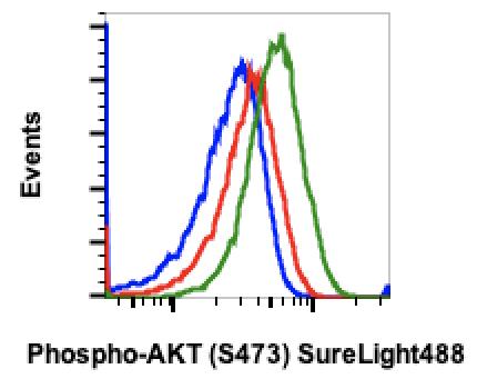 Phospho-Akt1 (Ser473) (Clone: B9) rabbit mAb SureLight488 conjugate