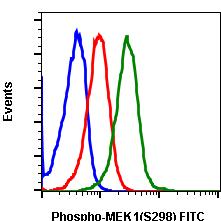 Phospho-MEK1 (Ser298) (Clone: H8) rabbit mAb FITC conjugate