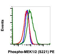 Phospho-MEK1/2 (Ser221) (Clone: D3) rabbit mAb PE Conjugate
