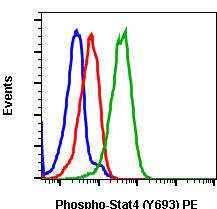 Phospho-Stat4 (Tyr693) (Clone: F6) rabbit mAb PE conjugate