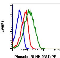Phospho-BLNK (Tyr84) (Clone: H4) rabbit mAb PE conjugate