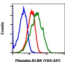 Phospho-BLNK (Tyr84) (Clone: H4) rabbit mAb APC conjugate