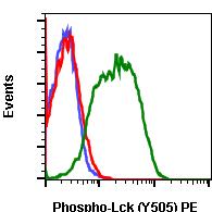 Phospho-Lck (Tyr505) (Clone: A3) rabbit mAb PE conjugate