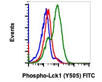 Phospho-Lck (Tyr505) (Clone: A3) rabbit mAb FITC conjugate