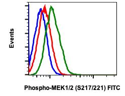 Phospho-MEK1/2 (Ser217/221) (Clone: H2) rabbit mAb FITC conjugate