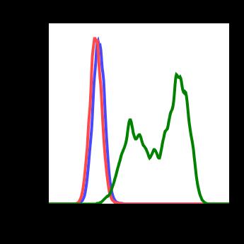 Phospho-c-Cbl (Tyr774) (Clone: R3B8) rabbit mAb