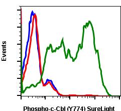 Phospho-c-Cbl (Tyr774) (Clone: R3B8) rabbit mAb SureLight488 conjugate
