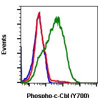 Phospho-c-Cbl (Tyr700) (Clone: E1) rabbit mAb SureLight 488 conjugate