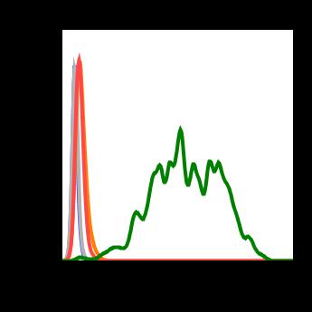 Phospho-Stat5 (Tyr694) (Clone: G11) rabbit mAb