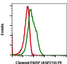 Cleaved PARP (Asp214) (Clone: H8) rabbit mAb PE conjugate