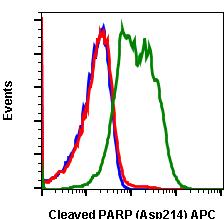 Cleaved PARP (Asp214) (Clone: H8) rabbit mAb APC conjugate