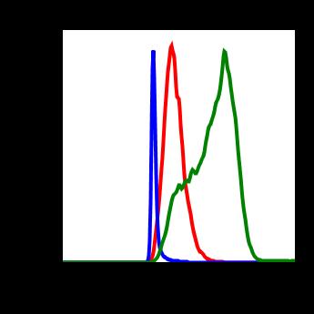 Phospho-PKCa (Thr497) (Clone: F1) rabbit mAb