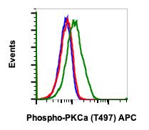 Phospho-PKCa (Thr497) (Clone: F1) rabbit mAb APC Conjugate
