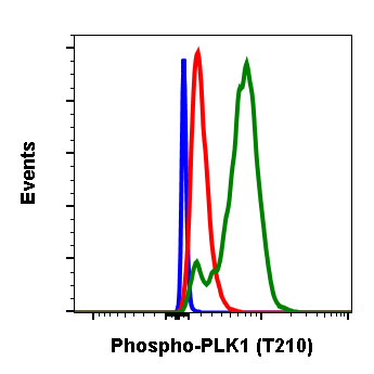 Phospho-PLK1 (Thr210) (Clone: C2) rabbit mAb