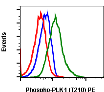Phospho-PLK1 (Thr210) (Clone: C2) rabbit mAb PE conjugate