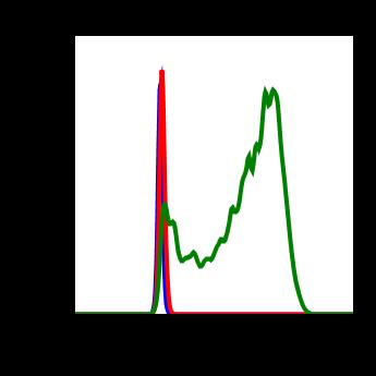 Phospho-Shp1 (Tyr536) (Clone: 2A7) rabbit mAb