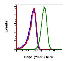 Phospho-Shp1 (Tyr536) (Clone: 2A7) rabbit mAb APC conjugate