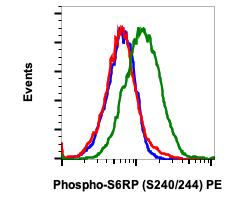 Phospho-S6-Ribosomal Protein (Ser240/244) (Clone: CD10) rabbit mAb PE Conjugate