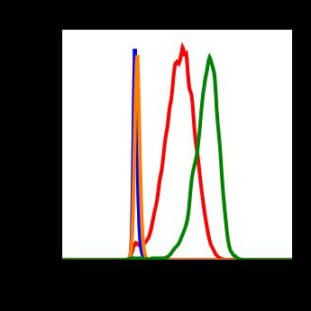 Phospho-mTOR (Ser2448) (Clone: E11) rabbit mAb