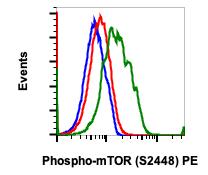 Phospho-mTOR (Ser2448) (Clone: E11) rabbit mAb PE Conjugate