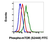 Phospho-mTOR (Ser2448) (Clone: E11) rabbit mAb FITC Conjugate