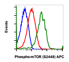 Phospho-mTOR (Ser2448) (Clone: E11) rabbit mAb APC Conjugate