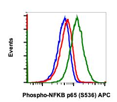 Phospho-NFKB p65 (Ser536) (Clone: B7) rabbit mAb APC Conjugate