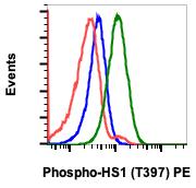 Phospho-HS1 (Tyr397) (Clone: F12) rabbit mAb PE Conjugate