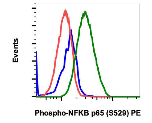 Phospho-NFkB p65 (Ser529) (Clone: H3) rabbit mAb PE conjugate