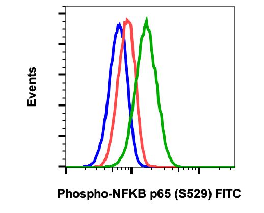 Phospho-NFkB p65 (Ser529) (Clone: H3) rabbit mAb FITC conjugate