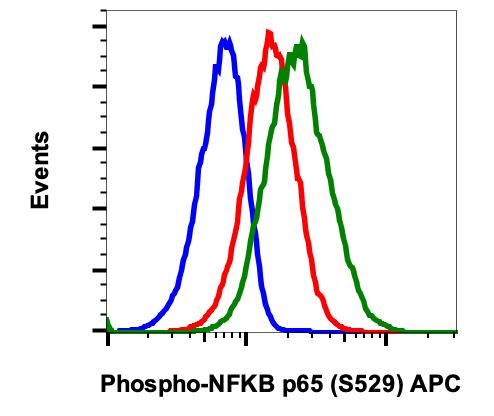Phospho-NFkB p65 (Ser529) (Clone: H3) rabbit mAb APC conjugate