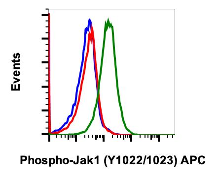 Phospho-Jak1 (Tyr1022/1023) (Clone: F11) rabbit mAb APC Conjugate