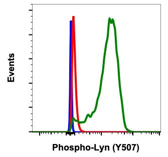 Phospho-Lyn (Tyr507) (Clone: 5B6) rabbit mAb